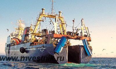 Россия сокращает рыбный экспорт