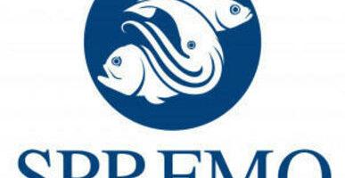 Международная сессия по рыбе Южной Пацифики пройдет в Петербурге