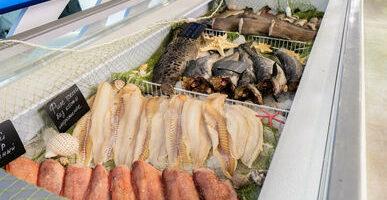 Импортерам рыбы упростят таможенные процедуры