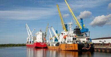 «Доброфлот» доставил по Севморпути 3000 тонн красной рыбы в Архангельск
