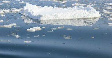 Изменения климата повлияли на уловы